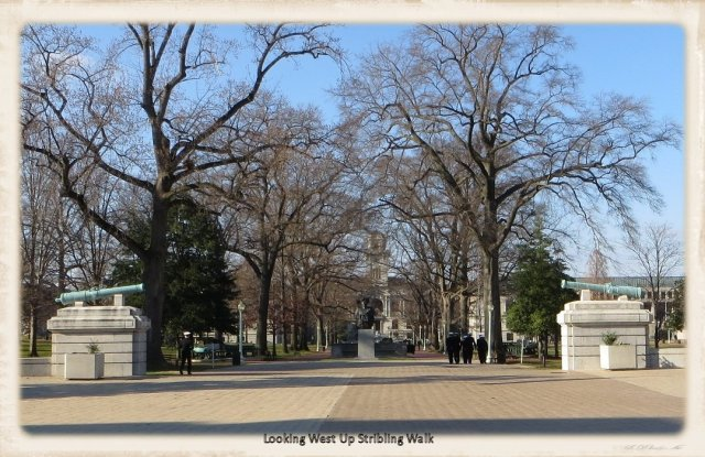 Naval Academy 099