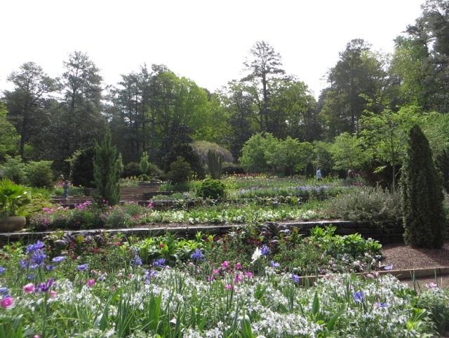 Chapel Hill 090